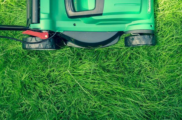 koszenie trawnika kraków