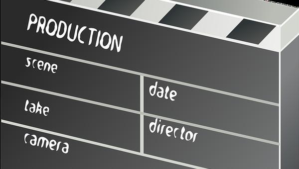 Czym zajmują się domy produkcyjne?