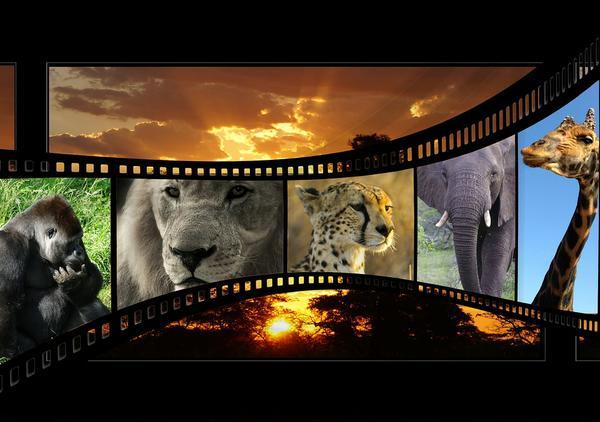filmy promocyjne do produktów