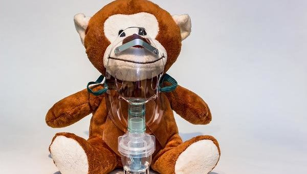 Nebulizator w weterynarii małych ssaków
