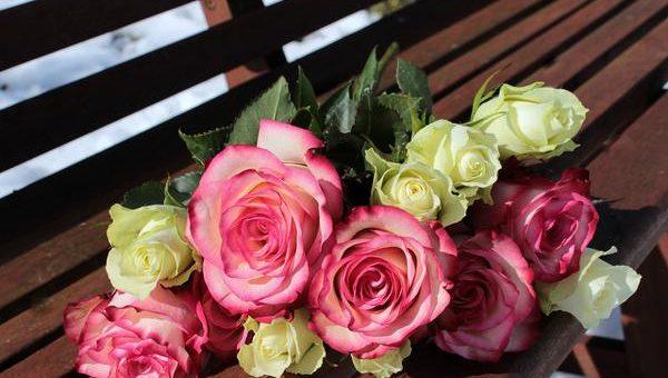 Róże w ramach prezentu
