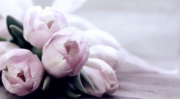 Kwiatowe dekoracje ślubne zapewniają wyjątkowy klimat uroczystości