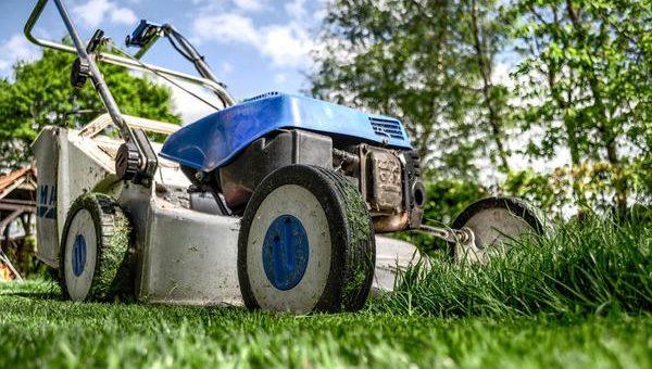 Zainwestowanie w porządną kosiarkę do trawy
