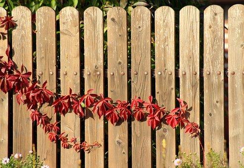 Nowe ogrodzenie działki